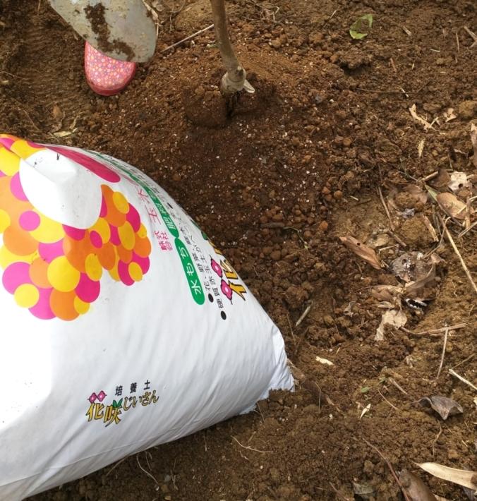 園芸品店で買った培養土『花咲じいさん』