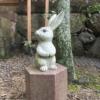 出雲大社のかわいいウサギたち