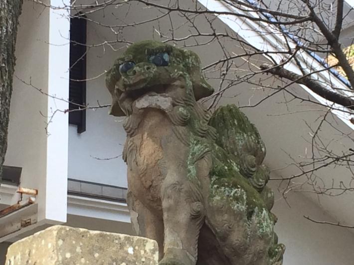 美保神社・狛犬