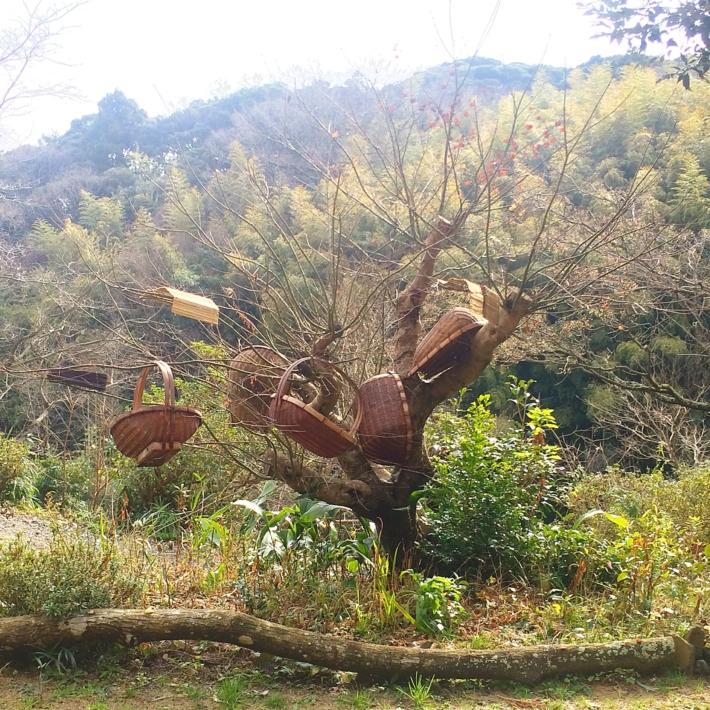 木に干される古民具