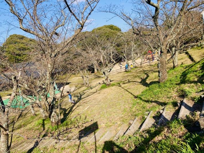 とても広く遊具もある愛宕山の公園