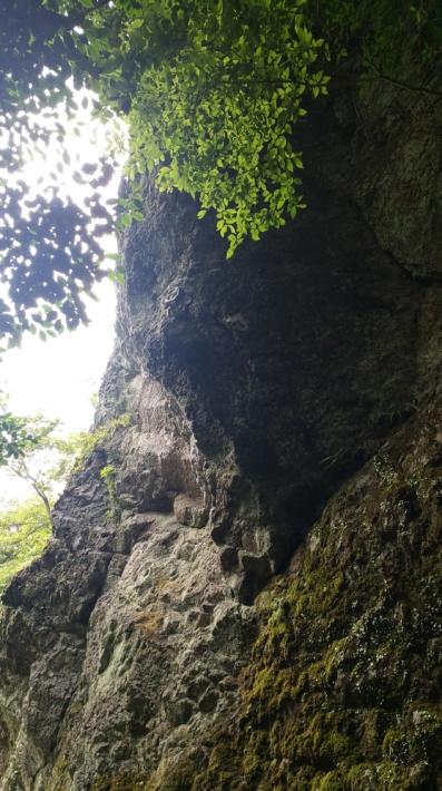 立久恵峡の岩壁を間近で見物