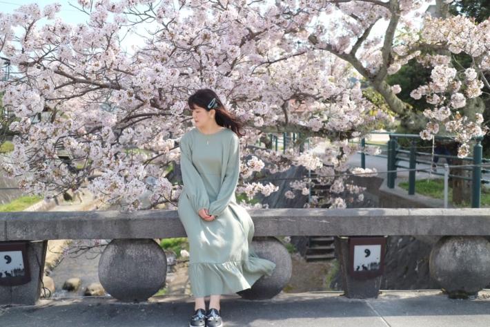 桜の下玉造の風吹き抜ける