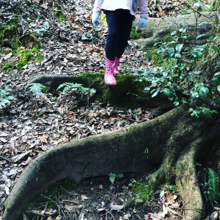 木の根で出来た天然の階段で冒険気分