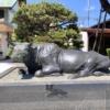 学問の神様『白潟天満宮』。松江の地元で「天神さん」と親しまれています。