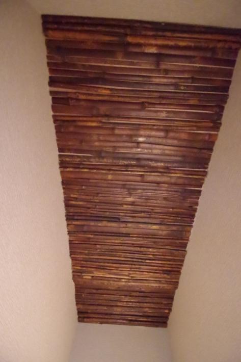手洗いの天井