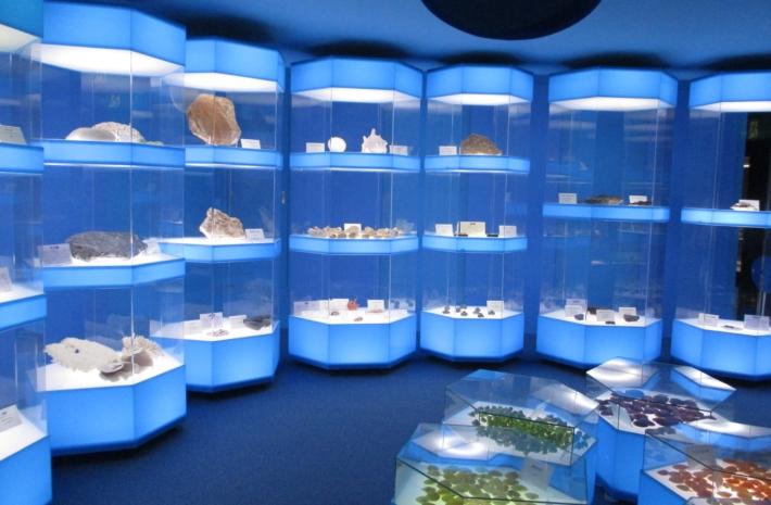 奥出雲多根自然博物館・2階では【海中生命の多様性】を展示